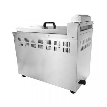 Professional Manufacturer Deep Fryer Machine